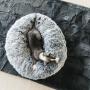 Kentucky Horsewear Hundebett Comfort Donut - Grau
