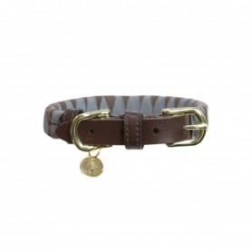 Kentucky Horsewear Hundehalsband Triangle