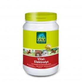 Lexa Vital Elektrolyt 1kg