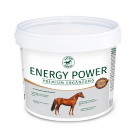 Atcom Horse Energy Power
