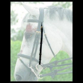 Dyon Double Bridle Attachment